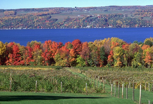 Image result for the finger lakes region